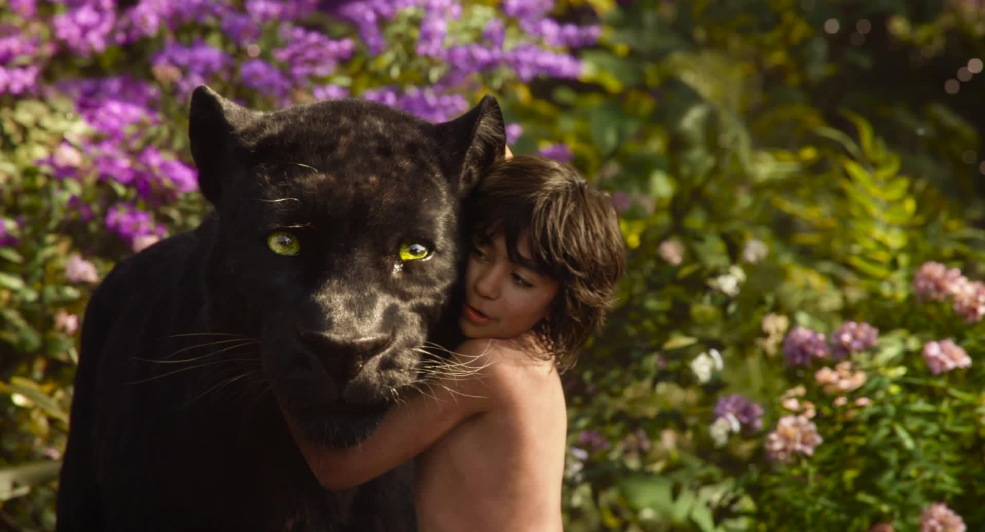 Kniha Džunglí - trailer 2