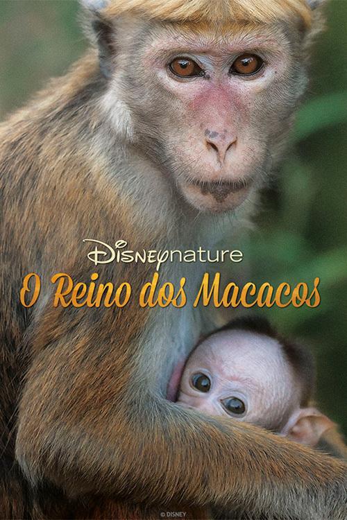 O Reino do Macacos