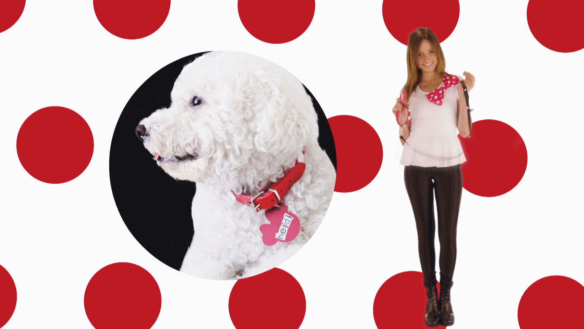 מיני ואני עם ליהי קורנובסקי - איך מכינים קולר מיני לכלב