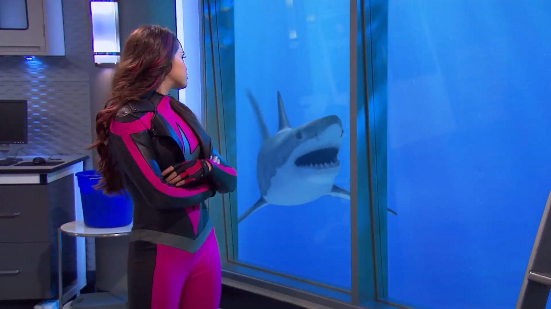 Supersygehuset - Horaces kæle-haj