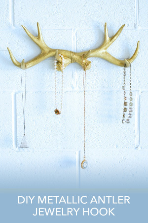 Antler Jewelry Hook