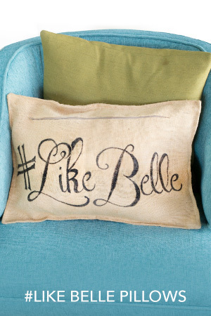 Like Belle Pillows