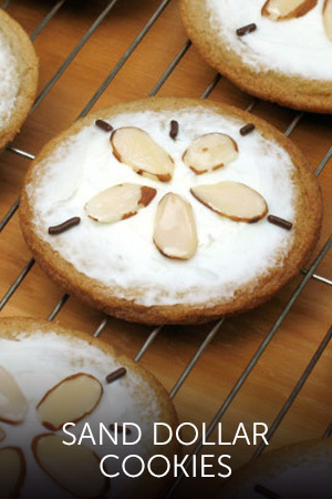 CR- ARiel Sand Dollar Cookies