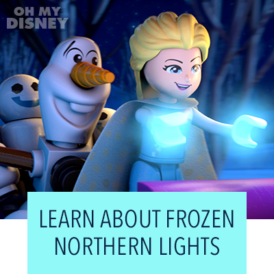 Learn About Frozen Northern Lights