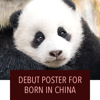 New Poster for Born in China