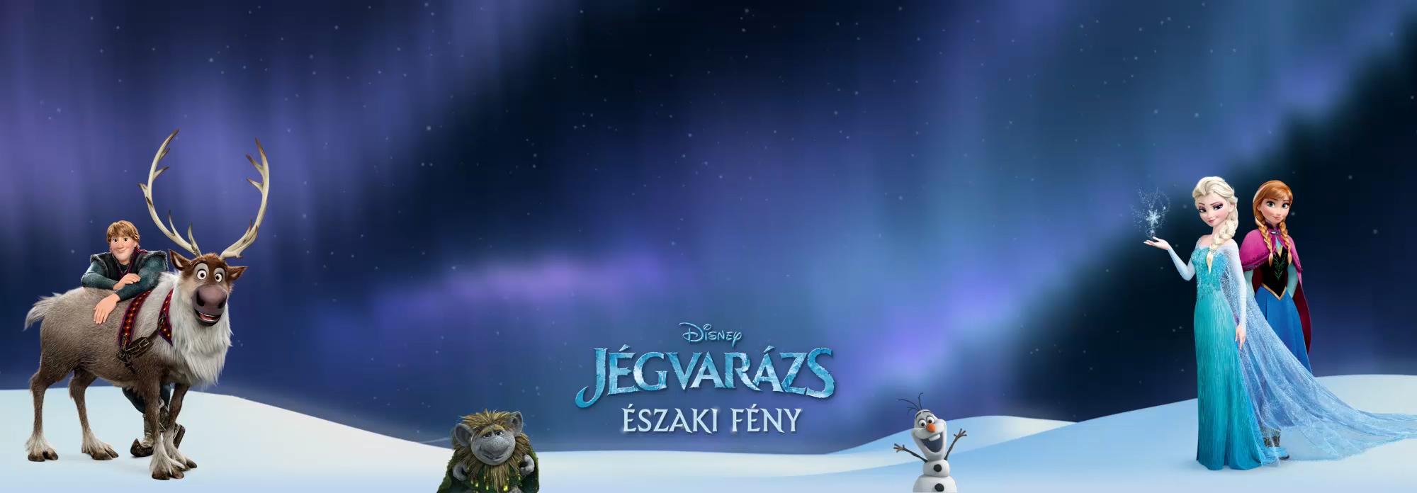 HU Frozen Northern Lights Flex Hero Header