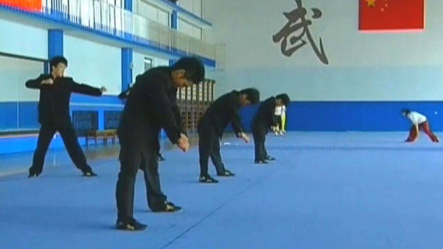 Martial Arts Student Training