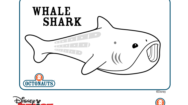 Image Gallery Octonauts Whale Shark Whale Shark Coloring Page