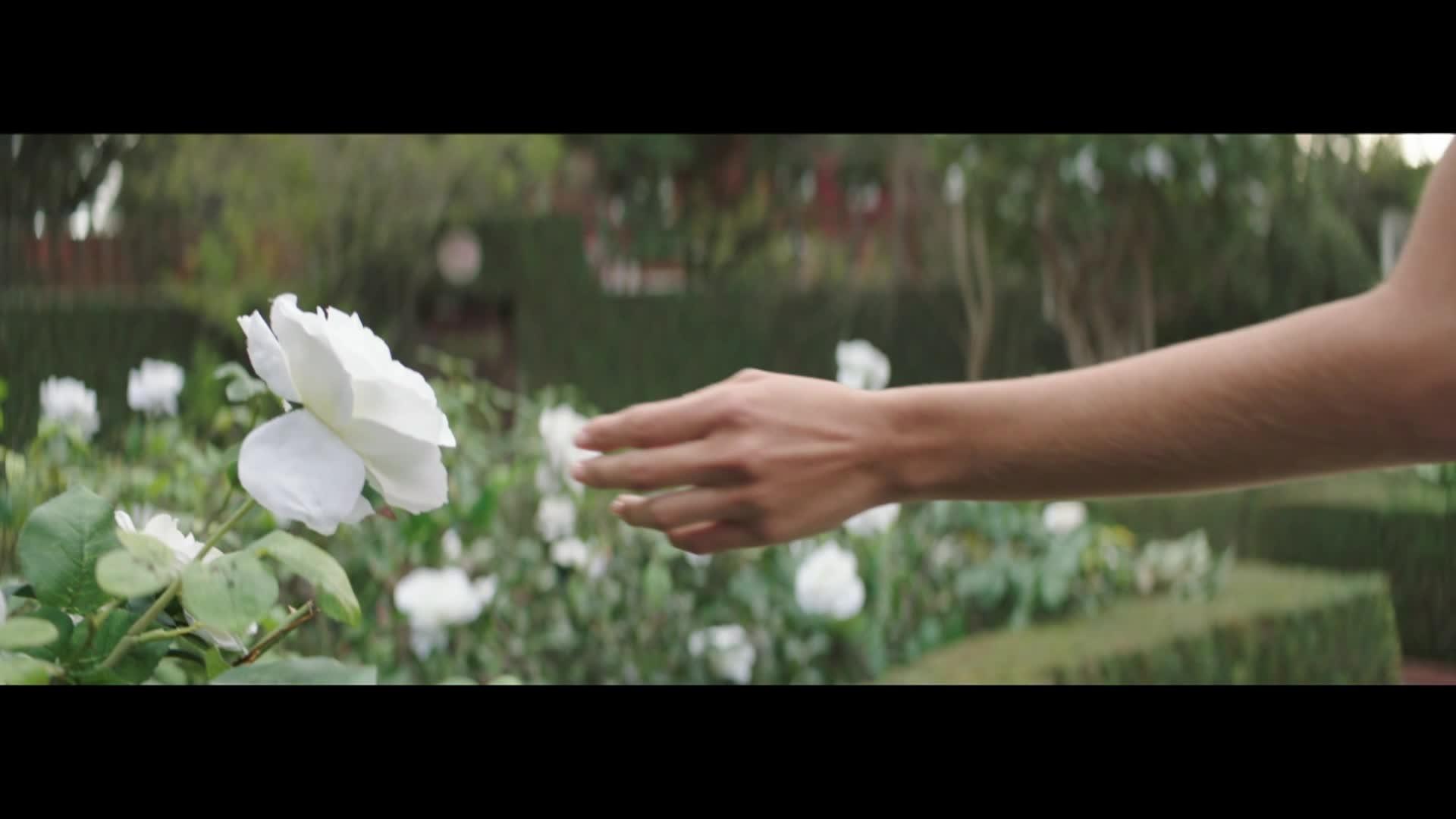 Tini: El gran cambio de Violetta - music video