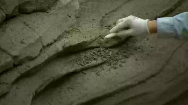 Cars Land: Rock Work