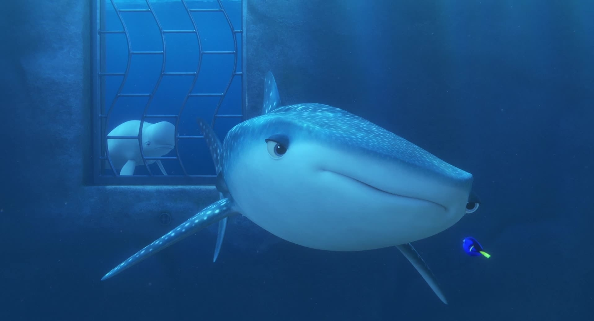 Finding Dory | Je bent een walvis