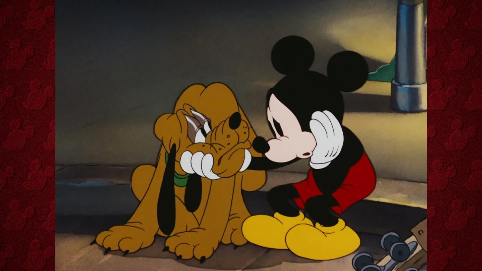 Échate a Reír - Exposición canina