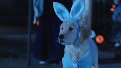 Spooky Buddies Clip - No Ordinary Rabbit Costume