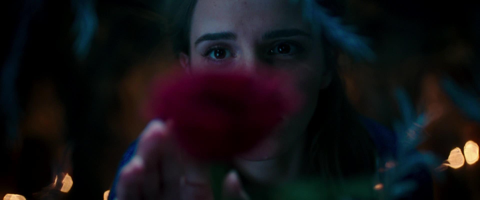 Belle en het Beest | Vlaamse Teaser Trailer