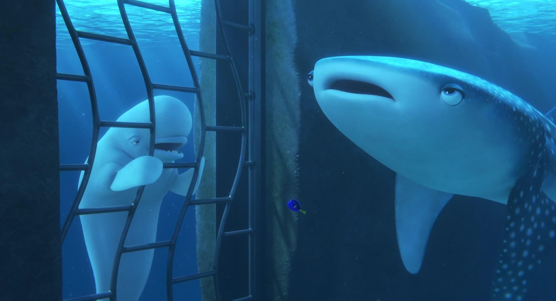 Alla ricerca di Dory - Tu sei un Beluga