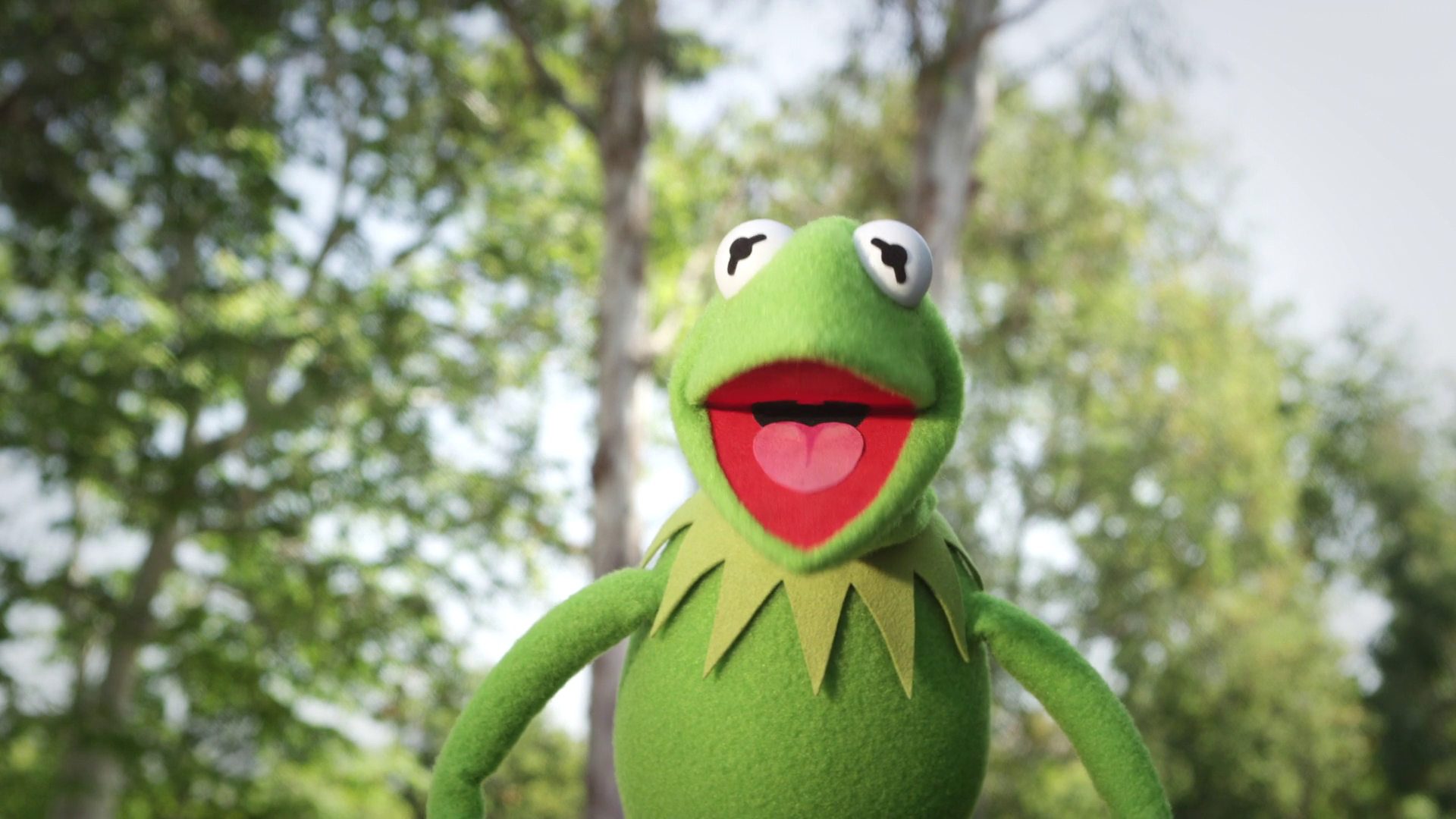 Kermit Celebrates the Start of Summer