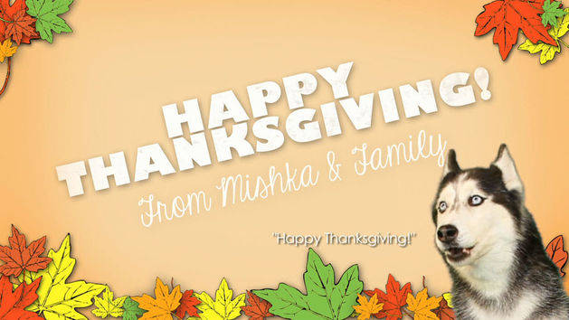 A Very Mishka Thanksgiving