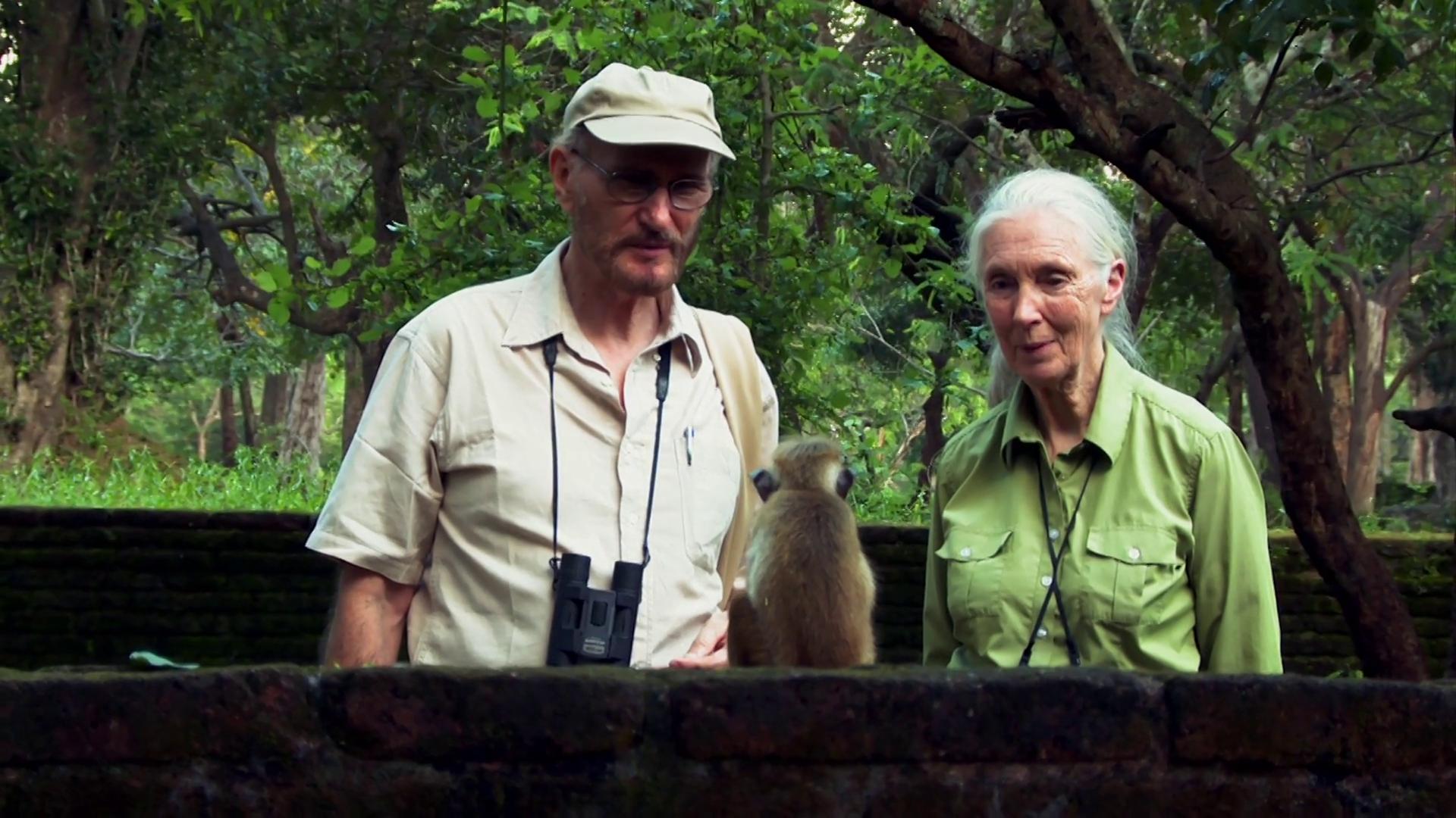 Senior Primatologists | Monkey Kingdom Bonus Clip