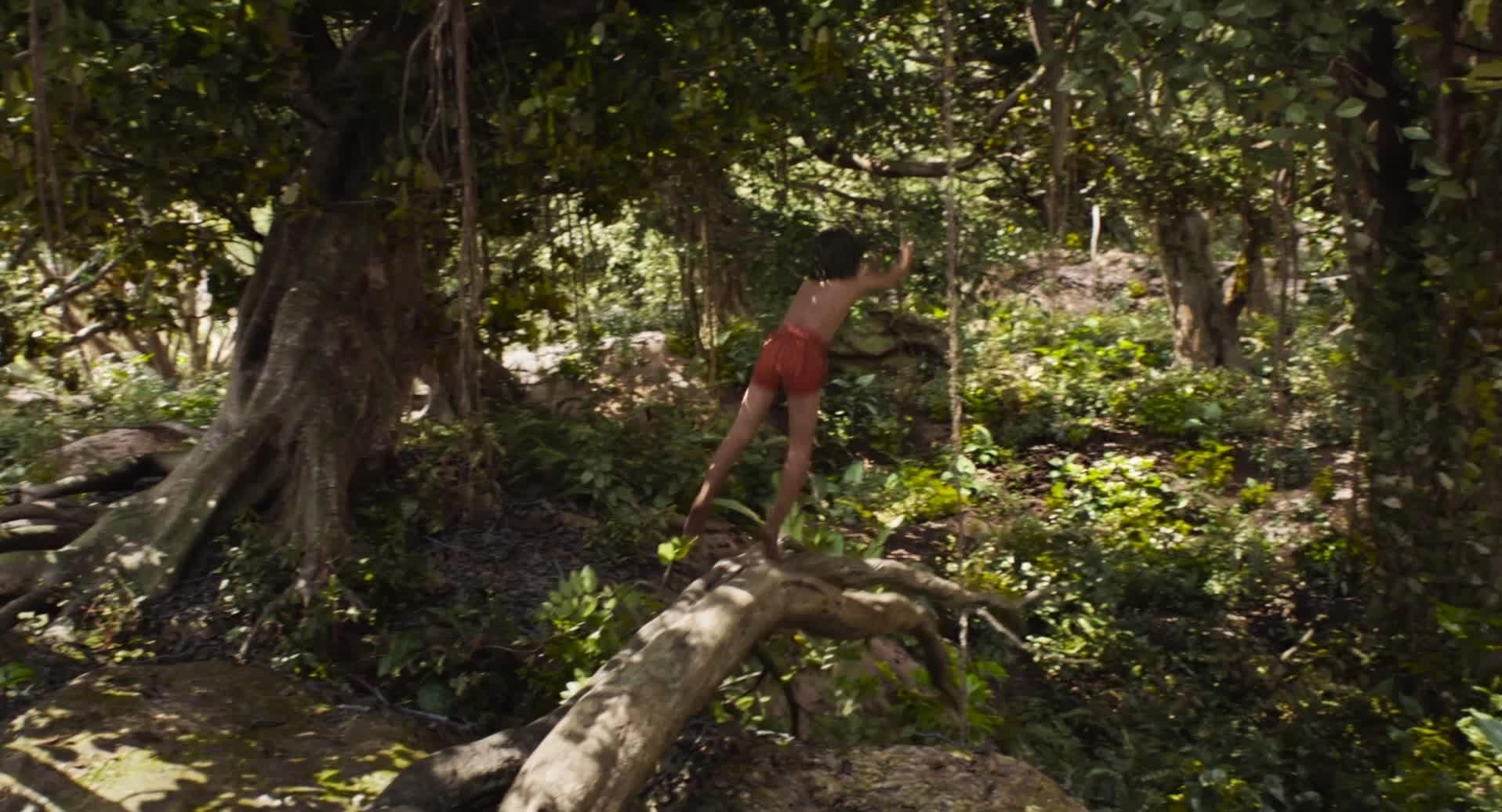 El libro de la Selva tráiler #1