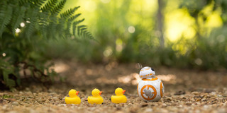 A Day in the Life of Sphero's BB-8