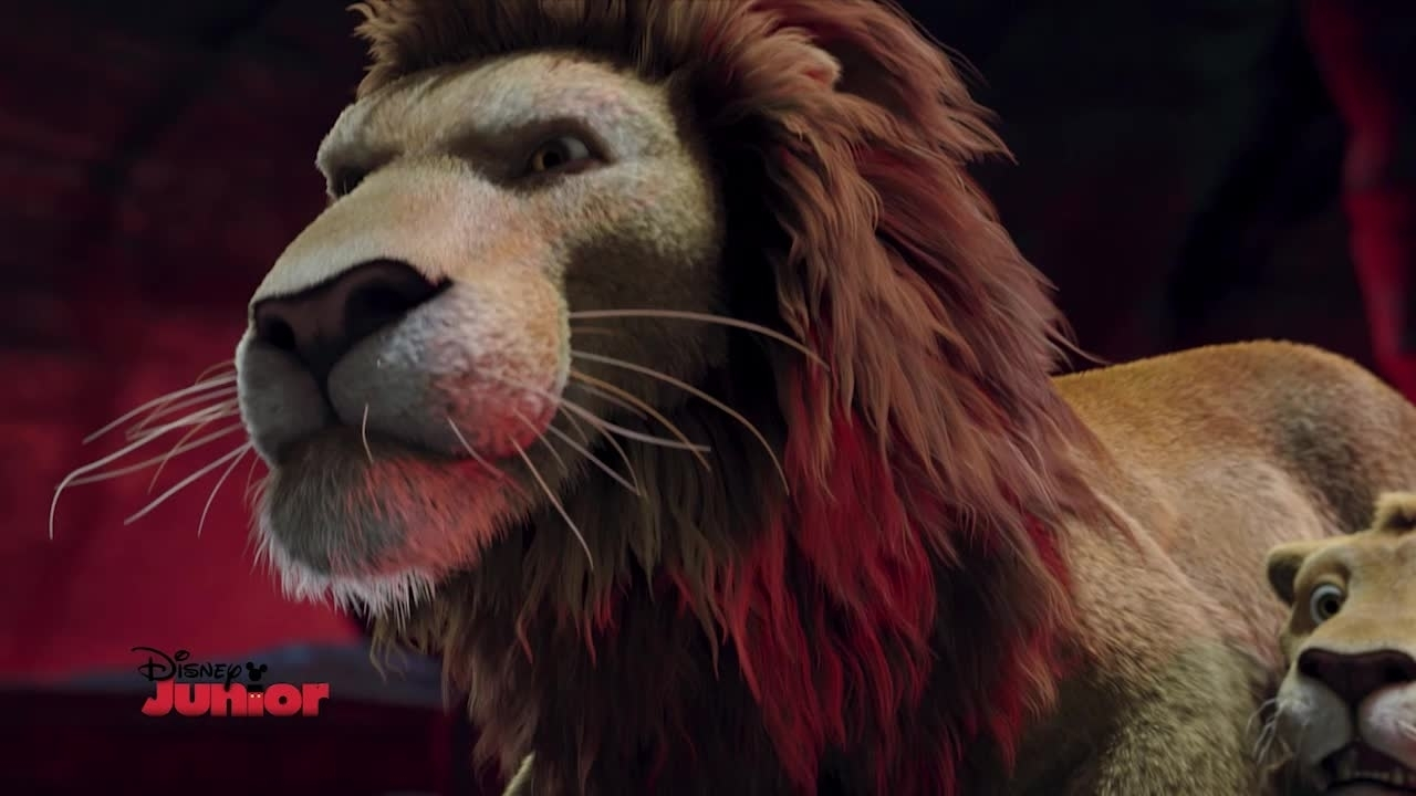 Magico Mondo dei Leoni - Uno zoo in fuga