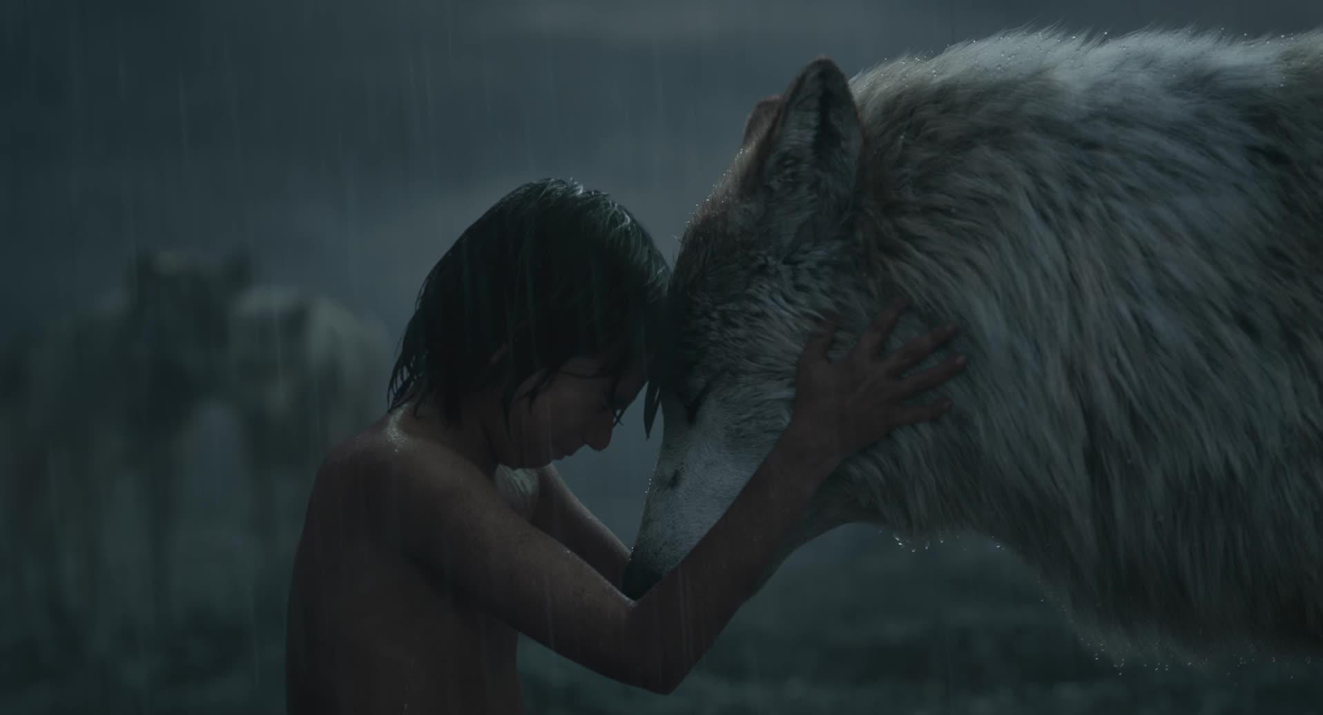Mowgli lascia il branco