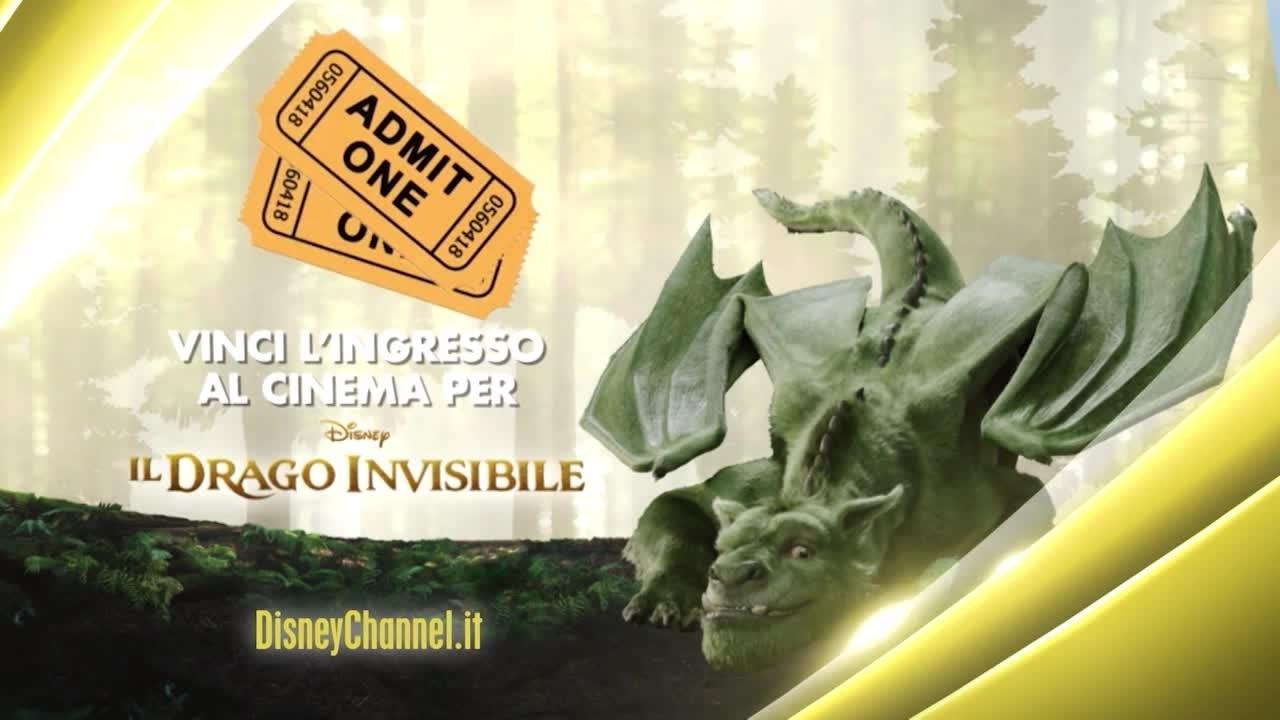 Il Drago Invisibile - Concorso