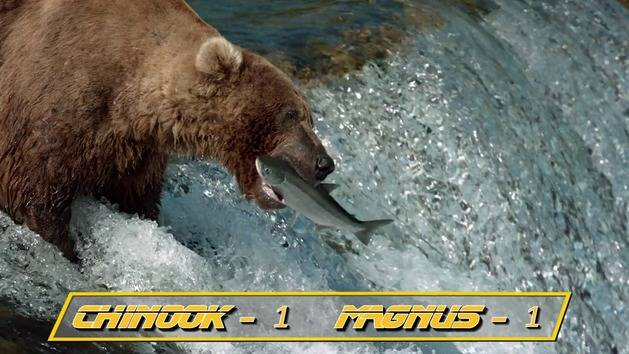 Disneynature Bears & ESPN Present: Salmon Run Invitational - Oh My Disney