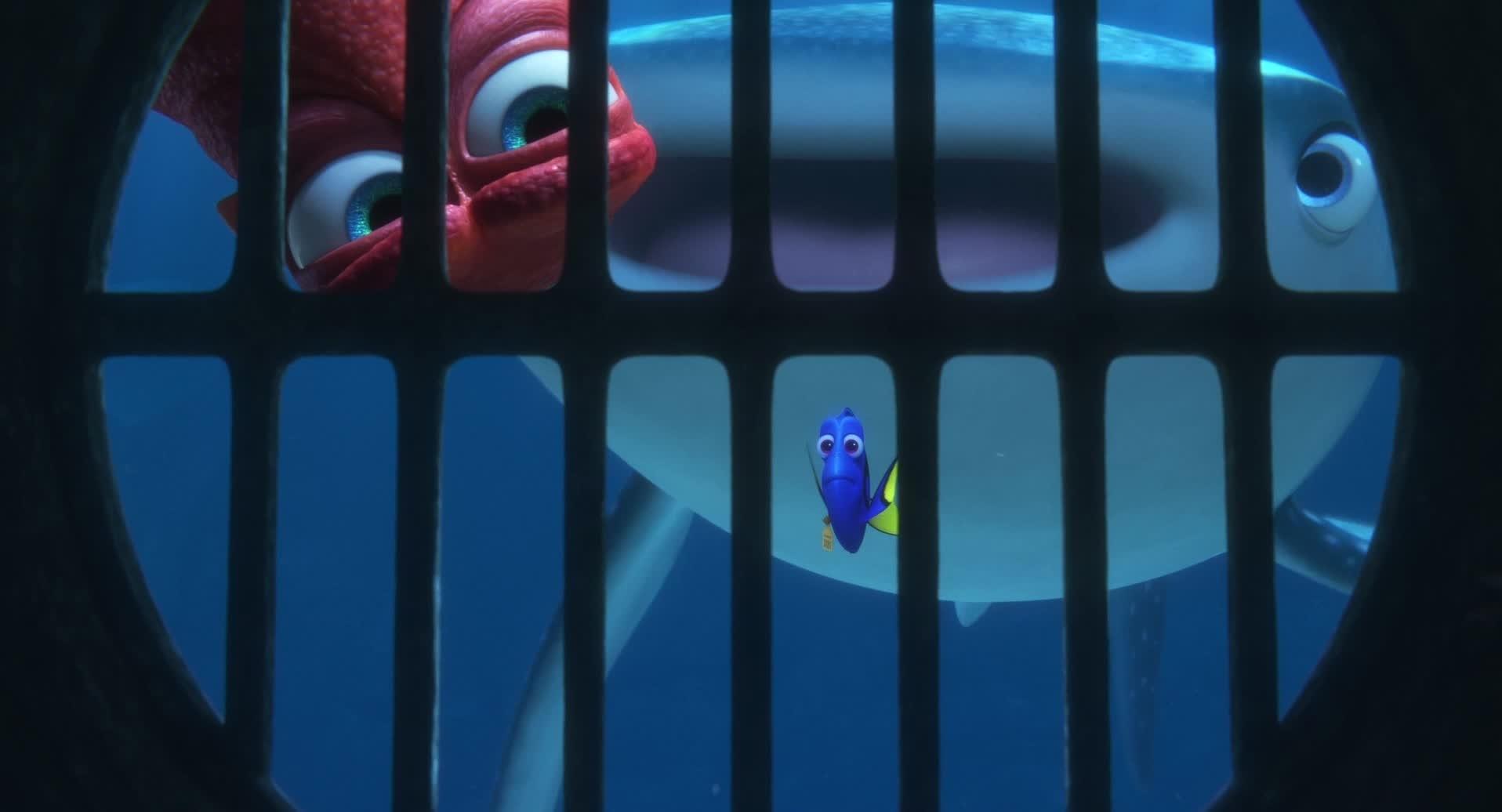 Alla ricerca di Dory - Vai attraverso i tubi