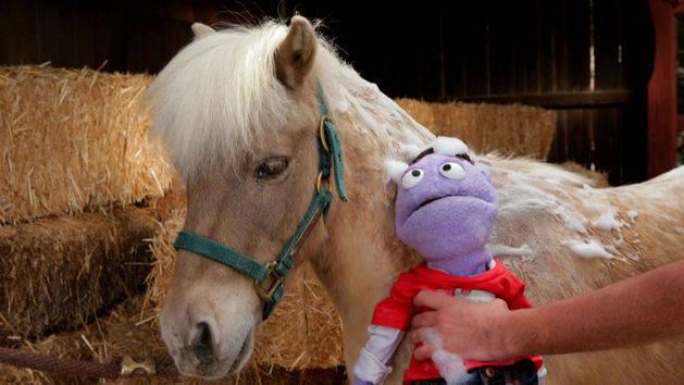 Crash My Life: Clean Horse