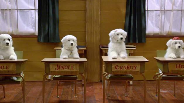 Santa Paws 2: The Santa Pups: Meet the Santa Pups 2