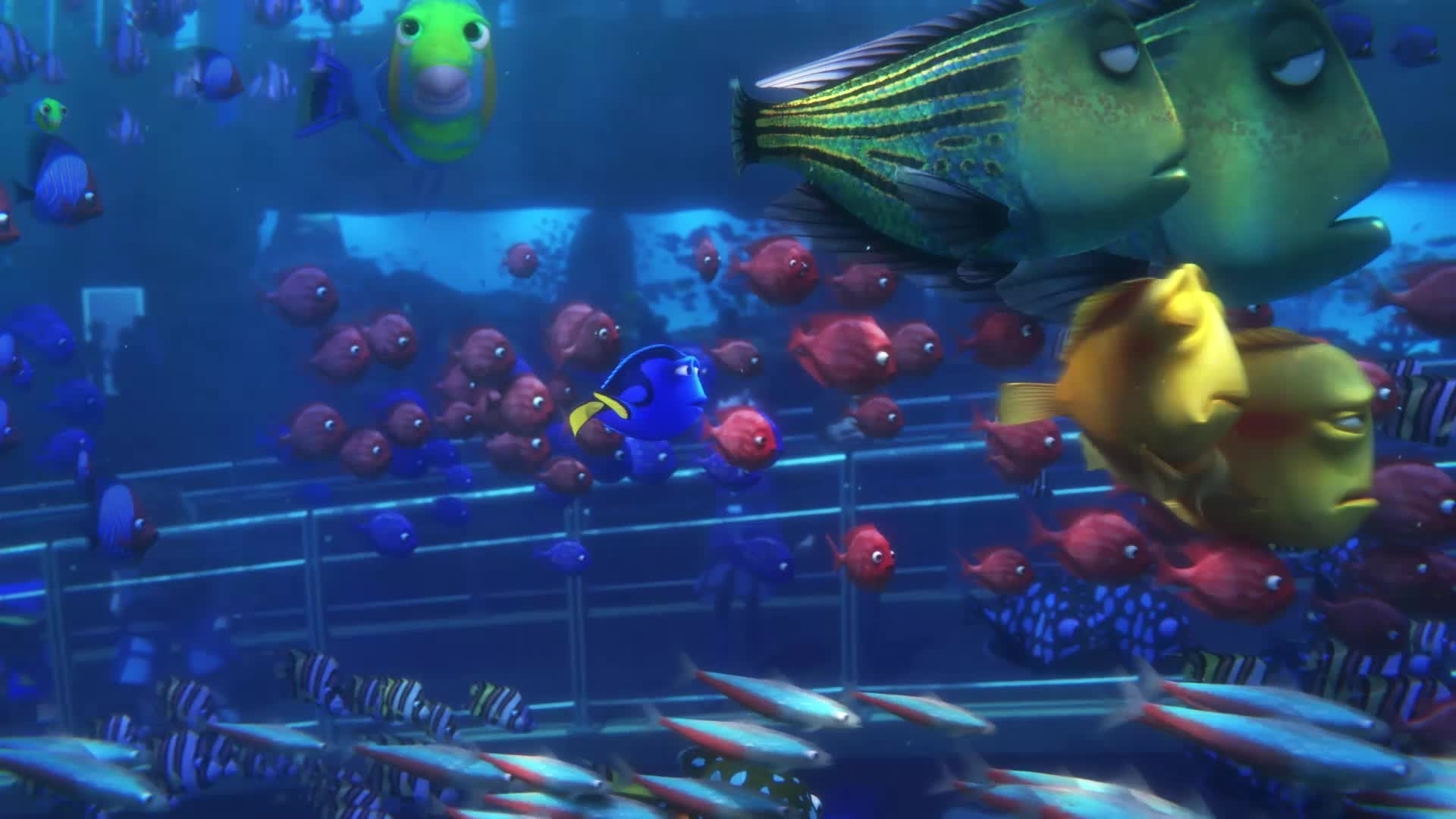 Finding Dory - Going Home