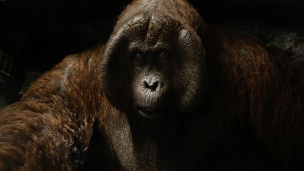 King Louie Clip - The Jungle Book