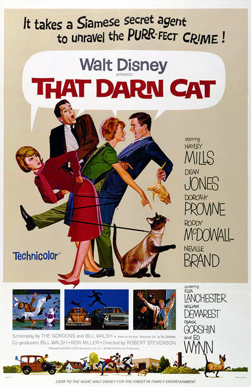 That Darn Cat Full Movie