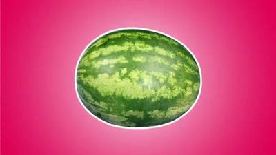 Fruity, Fruity Fruit!: Watermelon