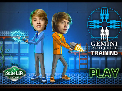 Gemini Project Training