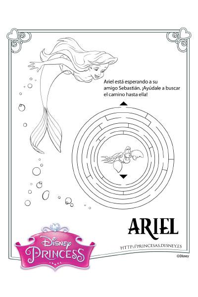 Ariel actividad
