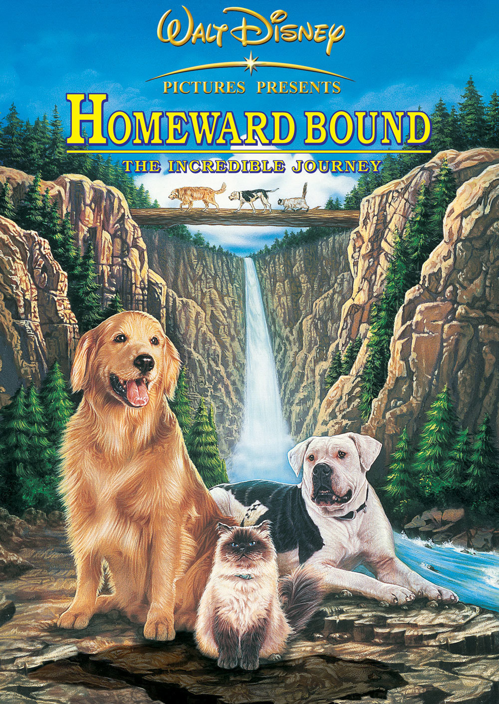 「Homeward Bound The Incredible Journey」の画像検索結果