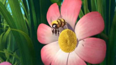 Bee's-Eye