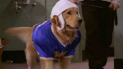 Air Bud - Golden Receiver Trailer