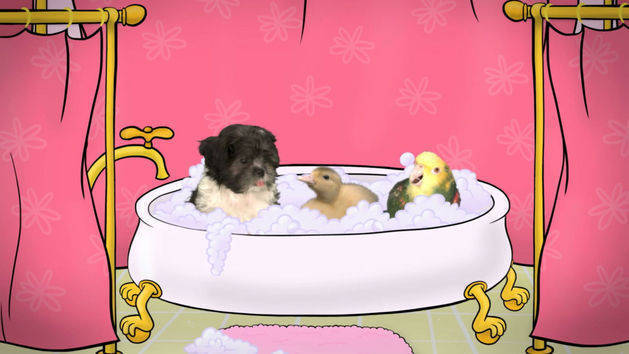 Fuzzy Tales: Rub-A-Dub-Dub: Three Pets in a Tub