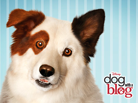 Dog With A Blog Disney Channel