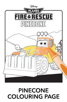 Pinecone Colouring Page