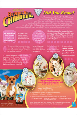 Beverly Hills Chihuahua Did You Know?