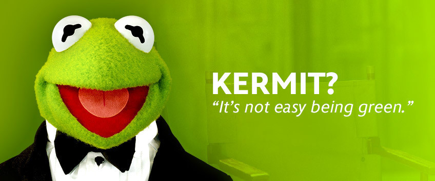 Kermit - Look Alike