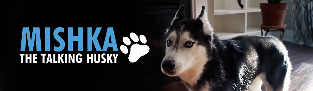 Mishka the Talking Husky