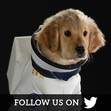 Space Buddies Twitter