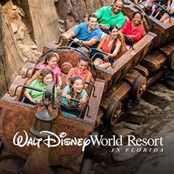 Disneyworld FL
