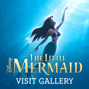 The Little Mermaid Gallery