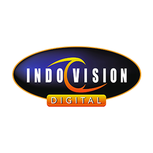 Indovision on Disney Channel